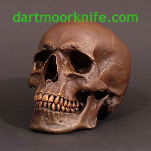 LIFE SIZE HUMAN SKULL in SOLID BRONZE